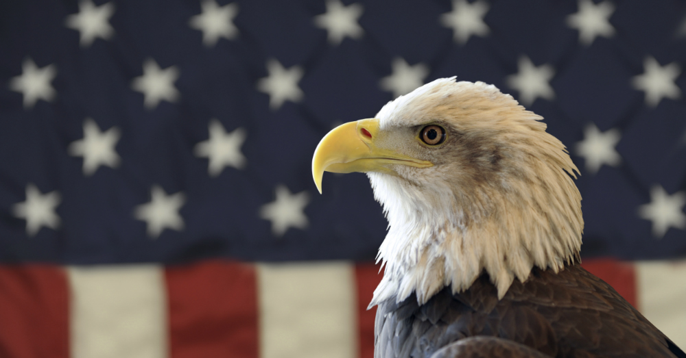 11.04.16 - God Bless America